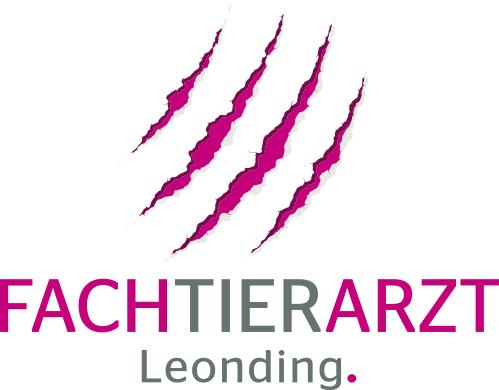 www.fachtierarzt-leonding.at